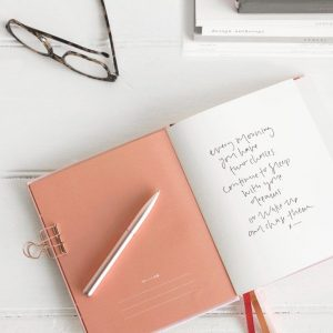Angela Ferlita dream planner diary